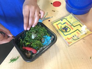 Child creating a small terrarium for an airplant. Image also shows their CD maze challenge example.